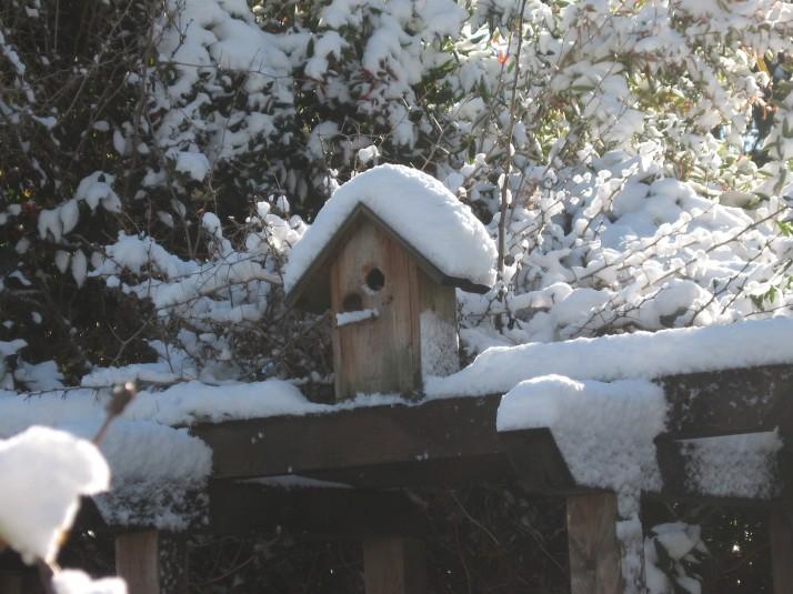 snowy-bird-house